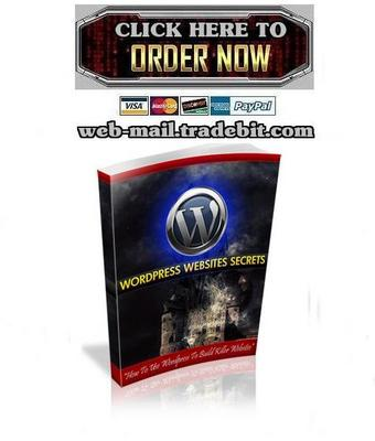 Product picture WordPress Website Secrets